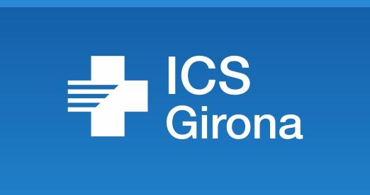 Banner ICS